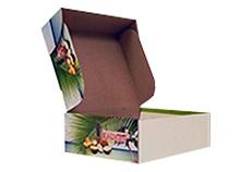 Cajas y Empaques Plegadizos 2
